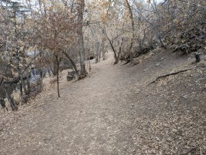 On Freedon Trail